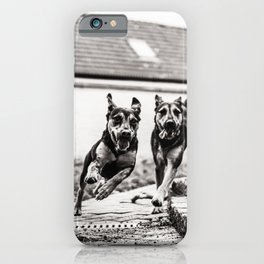 Dogs Have Fun At The Garden bw iPhone Case