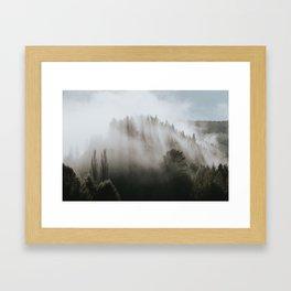 Catlins Mist Framed Art Print