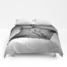 Manta Ride Comforters