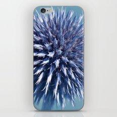 Globe thistle 247 iPhone & iPod Skin