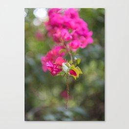 Flower Dream 2 Canvas Print