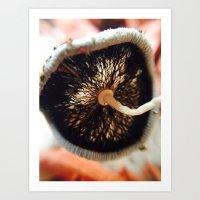 mushroom Art Prints featuring Mushroom by UMe Images