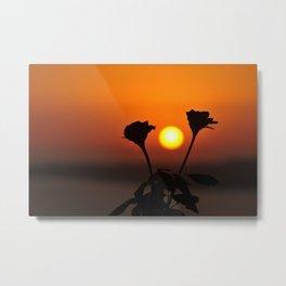 Romantic Rose Sunset Metal Print
