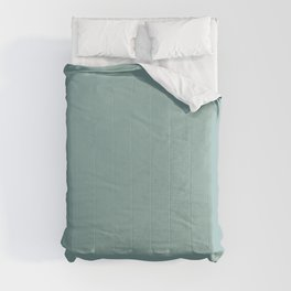 Precious Baby Light Pastel Green Blue Solid Color Pairs To Sherwin Williams Drizzle SW 6479 Comforters