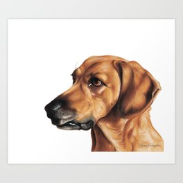 Dog Artwork in coloured pencil Art Print