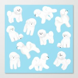 Bichon Frise Pattern (Blue Background) Canvas Print