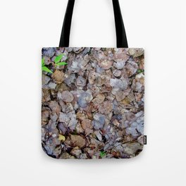 Last Years Fallen Foliage Tote Bag