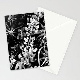 Lupinus #2 (black) Stationery Cards