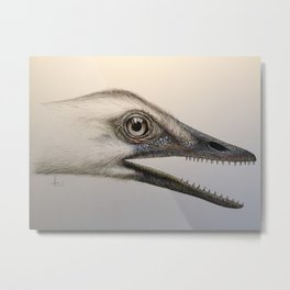 Archaeopteryx lithographica Metal Print