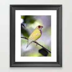 Dressed in Yellow Framed Art Print