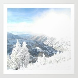 White Winter Art Print