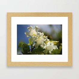 """Moonflower"" by ICA PAVON Framed Art Print"