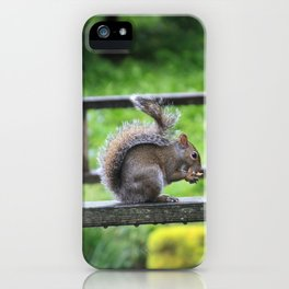Nuts 'Bout Nuts iPhone Case