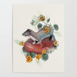 Stoat & Fox Poster