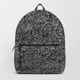living code Backpack