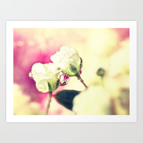VANILLA WEDDING - Little white summer roses Art Print