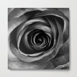 Black Rose Flower Floral Decorative Vintage Metal Print