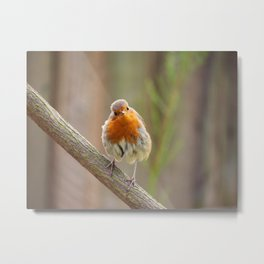 Watchoo lookin' at? Metal Print