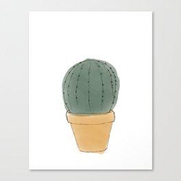 Round Cactus Houseplant Canvas Print