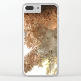 Lodolite Clear iPhone Case