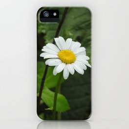 Daisy and Dew iPhone Case
