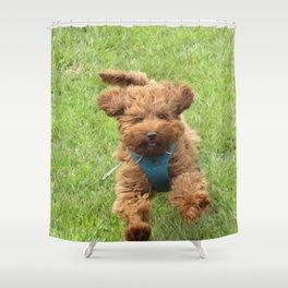 Luna the Labradoodle Shower Curtain