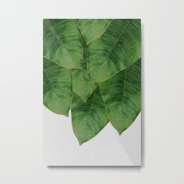 Banana Leaf III Metal Print