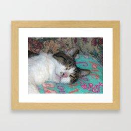 Honey Sleeping Framed Art Print