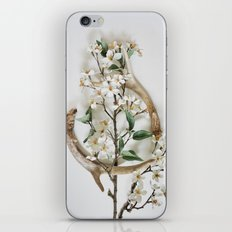 Sheds & Blossoms iPhone Skin