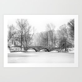 Stone Bridge Clove Lake Park Art Print