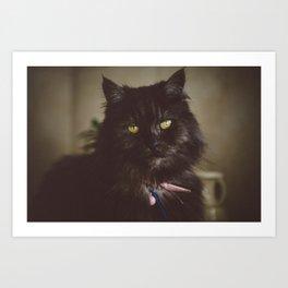 Kitty Meow Art Print