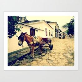 Horse - Paraty Art Print