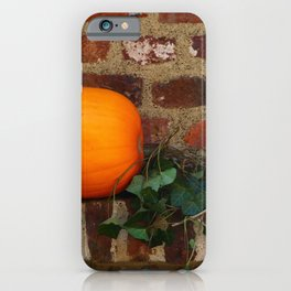 Gourds On A Windowsill iPhone Case