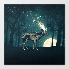 The Forest of the Lost Souls Canvas Print