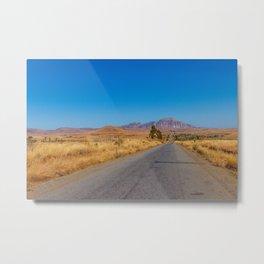 Long road Madagascar Metal Print