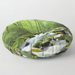 Spring Forest Stream Floor Pillow