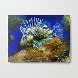 Fabulous Fish Metal Print