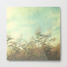 Soaring Storks Metal Print