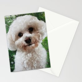 Cavachon - Green Background Stationery Cards