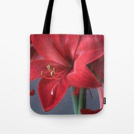 Red Amaryllis Flower Tote Bag