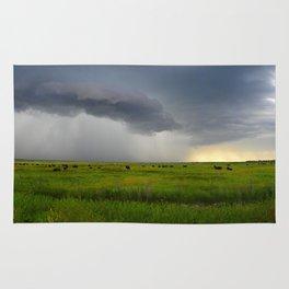 Idaho Thunderstorm Rug