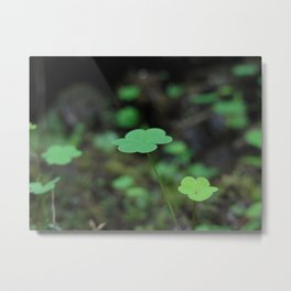 Woodlands Metal Print