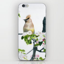 Amongst the Blossoms by Teresa Thompson iPhone Skin