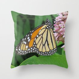 Monarch and Milkweed Throw Pillow