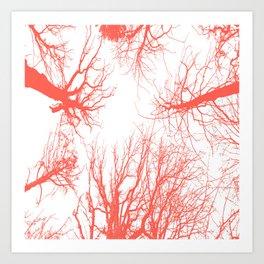 coral trees Art Print