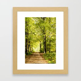A pathway covered by leaves in a magical forest Framed Art Print