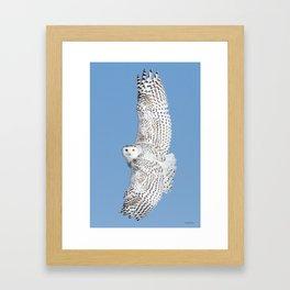 Flight of the goddess Framed Art Print