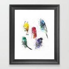 Palette Birds Framed Art Print