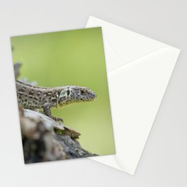 Lizard in Nature Stationery Cards