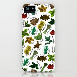 Tea Flavors // assorted teas for your enjoyment iPhone Case